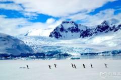 南极行-有梦的地方便是天堂