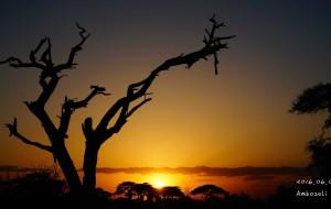 【内罗毕图片】走进非洲,走进肯尼亚。。。。。。
