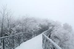 张家界天门山雪景一日游