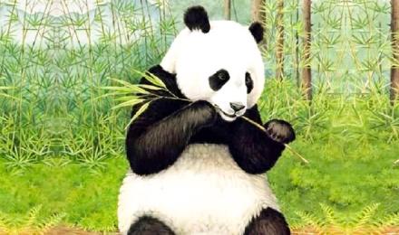 天府四川经典必玩可爱国宝熊猫基地三星堆博物馆精品纯玩一日游