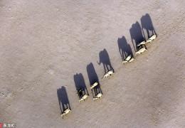(转)震撼航拍:上帝视角下的非洲大陆和野生动物世界