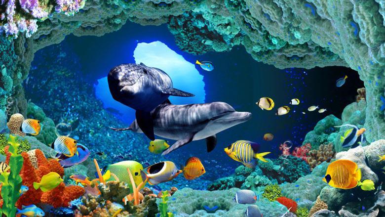 壁纸 海底 海底世界 海洋馆 圈养 水族馆 养殖 780_439