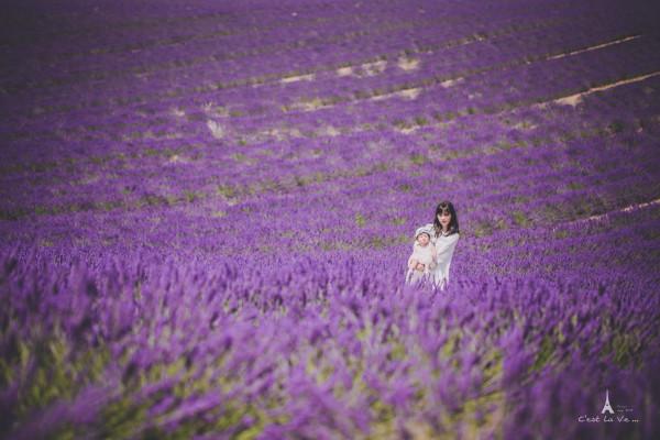 紫色ps背影素材