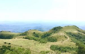 【恩平图片】#山萌海肆#在醉美的高山草甸----恩平牛塘山