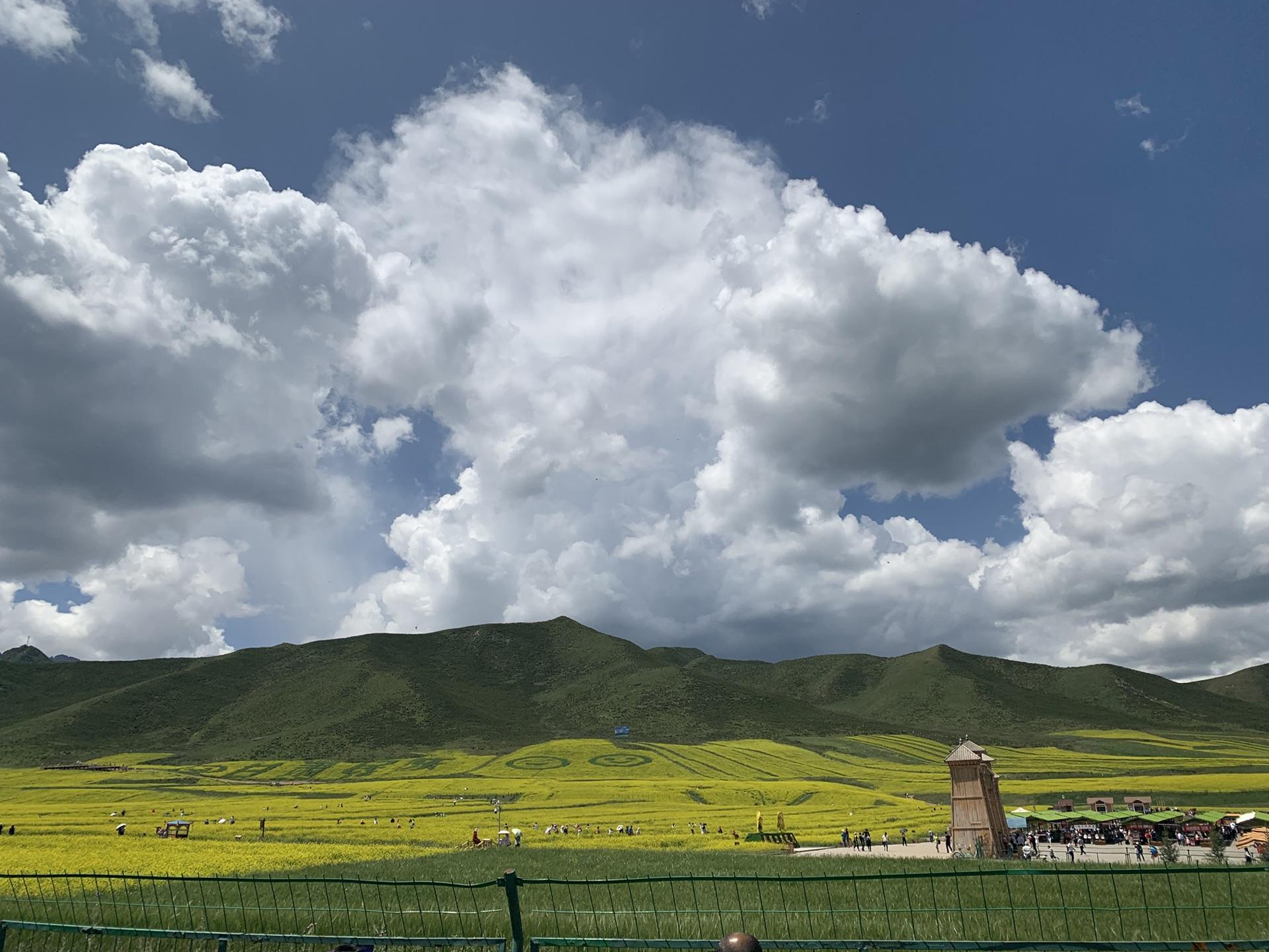 qinghai menyuan tours