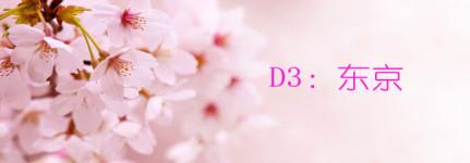 D3:东京
